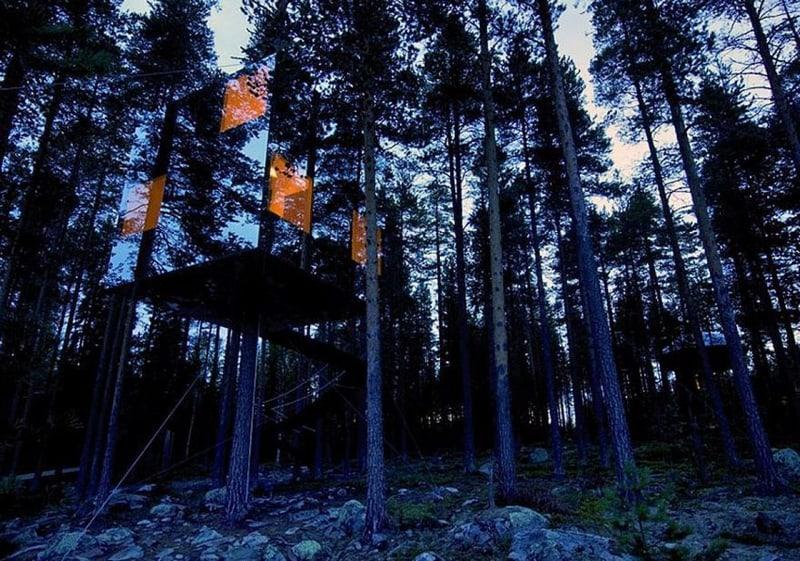 בית עץ שקוף