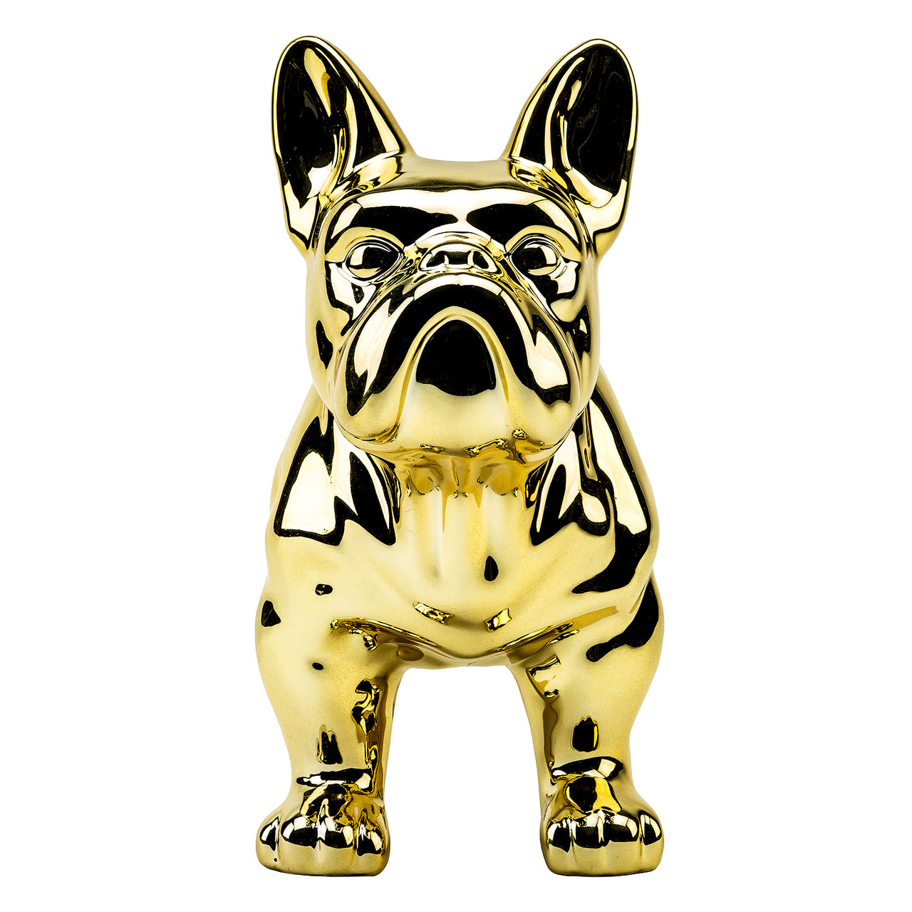 כלב זהב