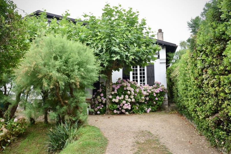 בית עם צמחייה